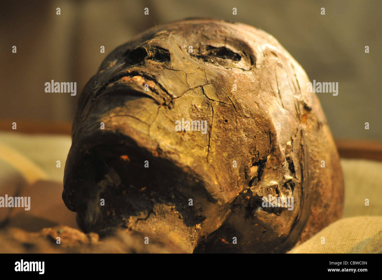 November 23, 2008 -- The mummy of King Tutankhamon in his tomb discovered by Howard Carter in 1922, in the Valley - Stock Image