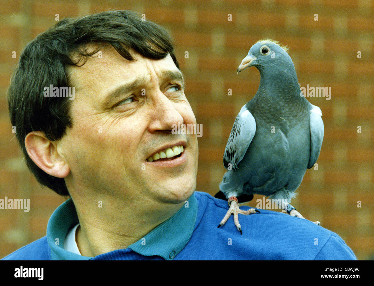 Football manager Graham Taylor with racing pigeon 1990 - Stock Image