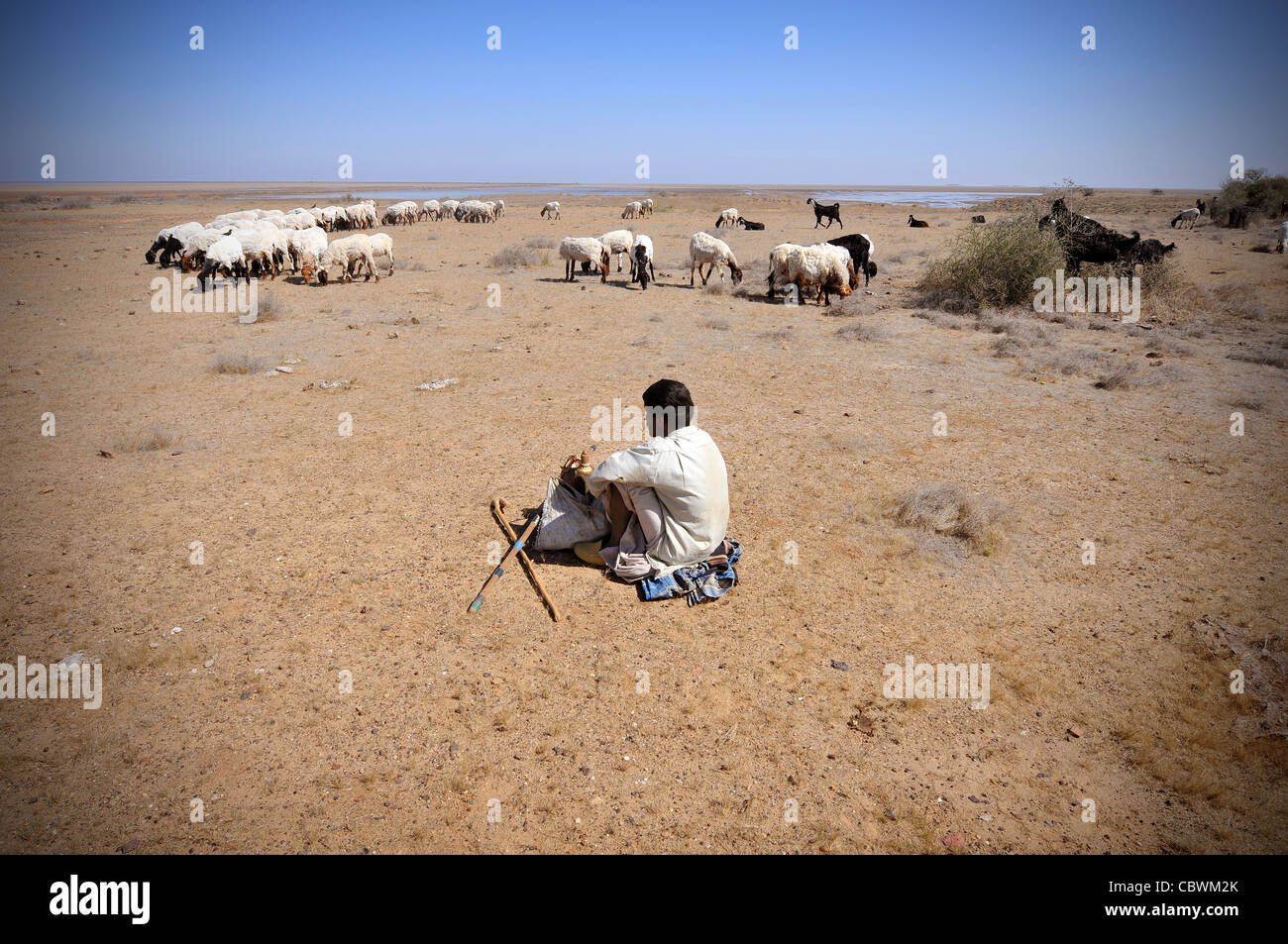 A shepherd in Kutch, India - Stock Image