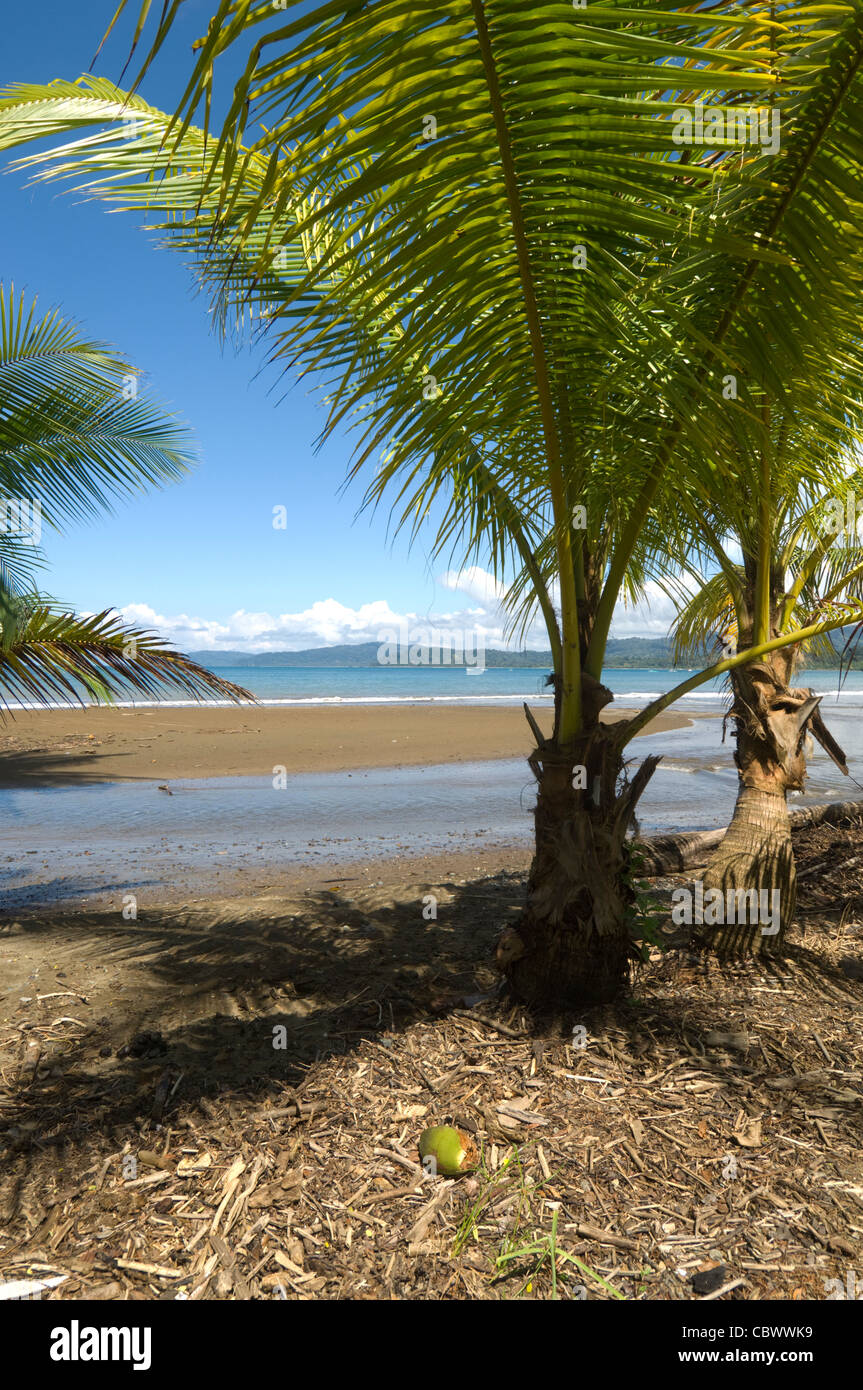 Drake Bay Osa Peninsula Costa Rica - Stock Image
