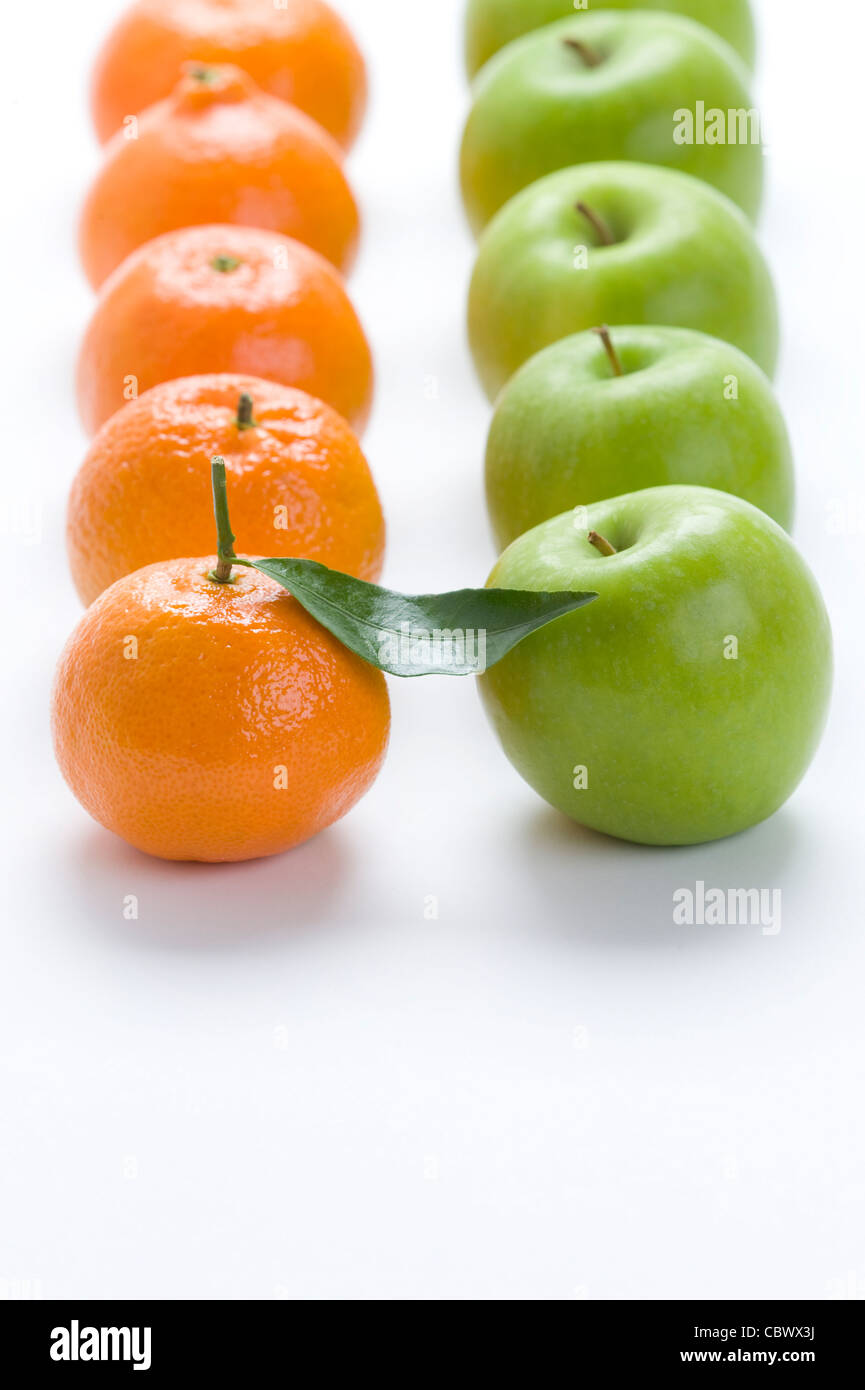 oranges and apples in rows on a white background - clementines and granny smith varieties - Stock Image