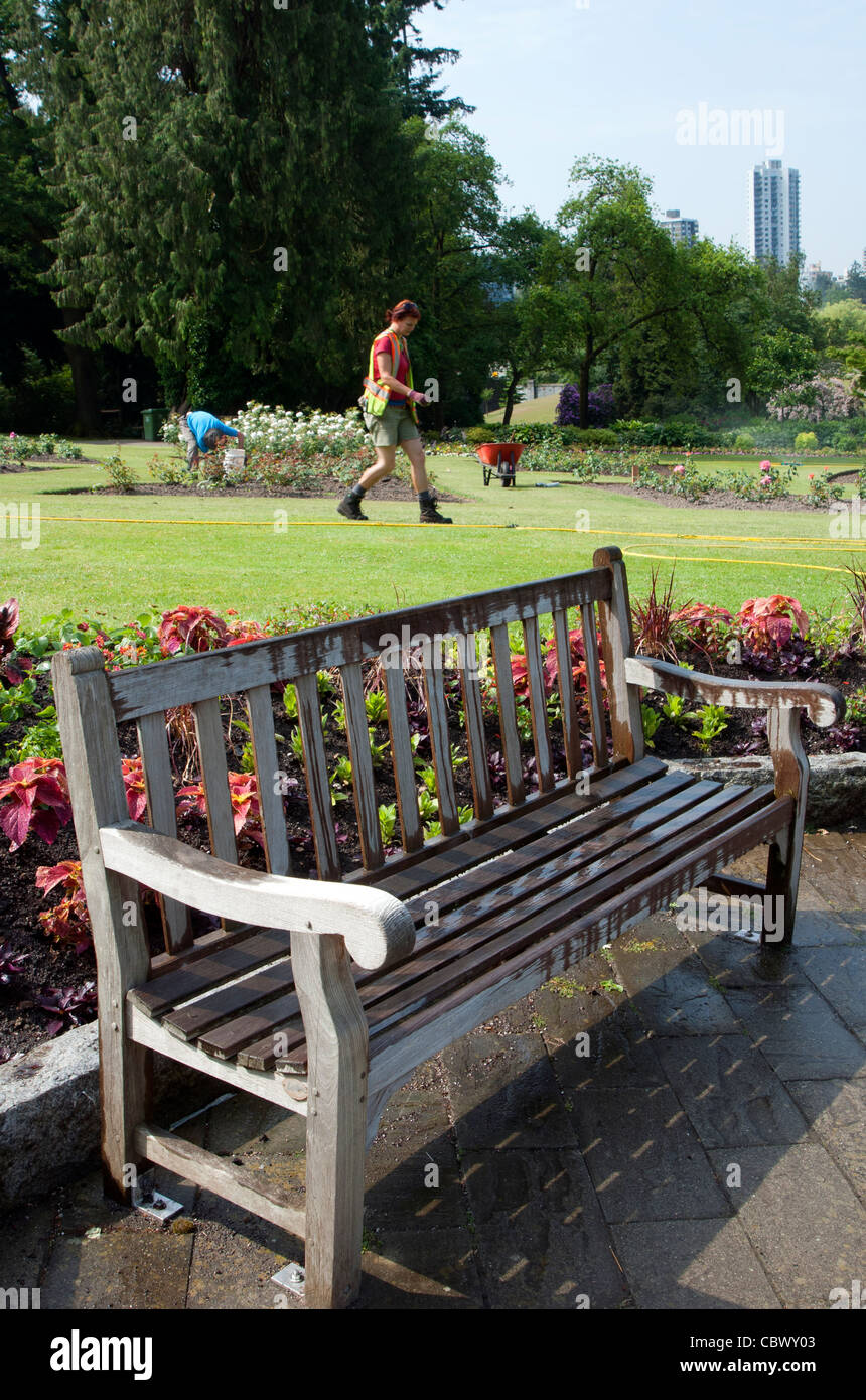 Park bench in formal garden, Stanley Park, Vancouver, British Columbia, Canada - Stock Image