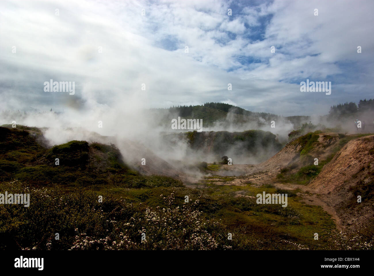 Craters of the Moon geothermal steam vents mud pools explosion crater Lake Taupo New Zealand - Stock Image