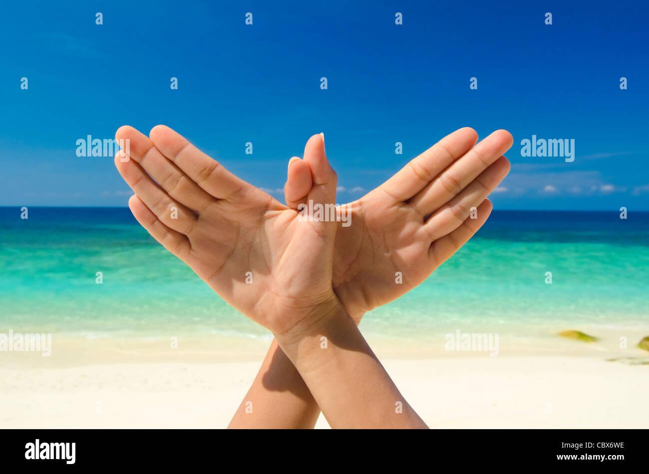 conceptual hand gesture of dove world peace concept original hand