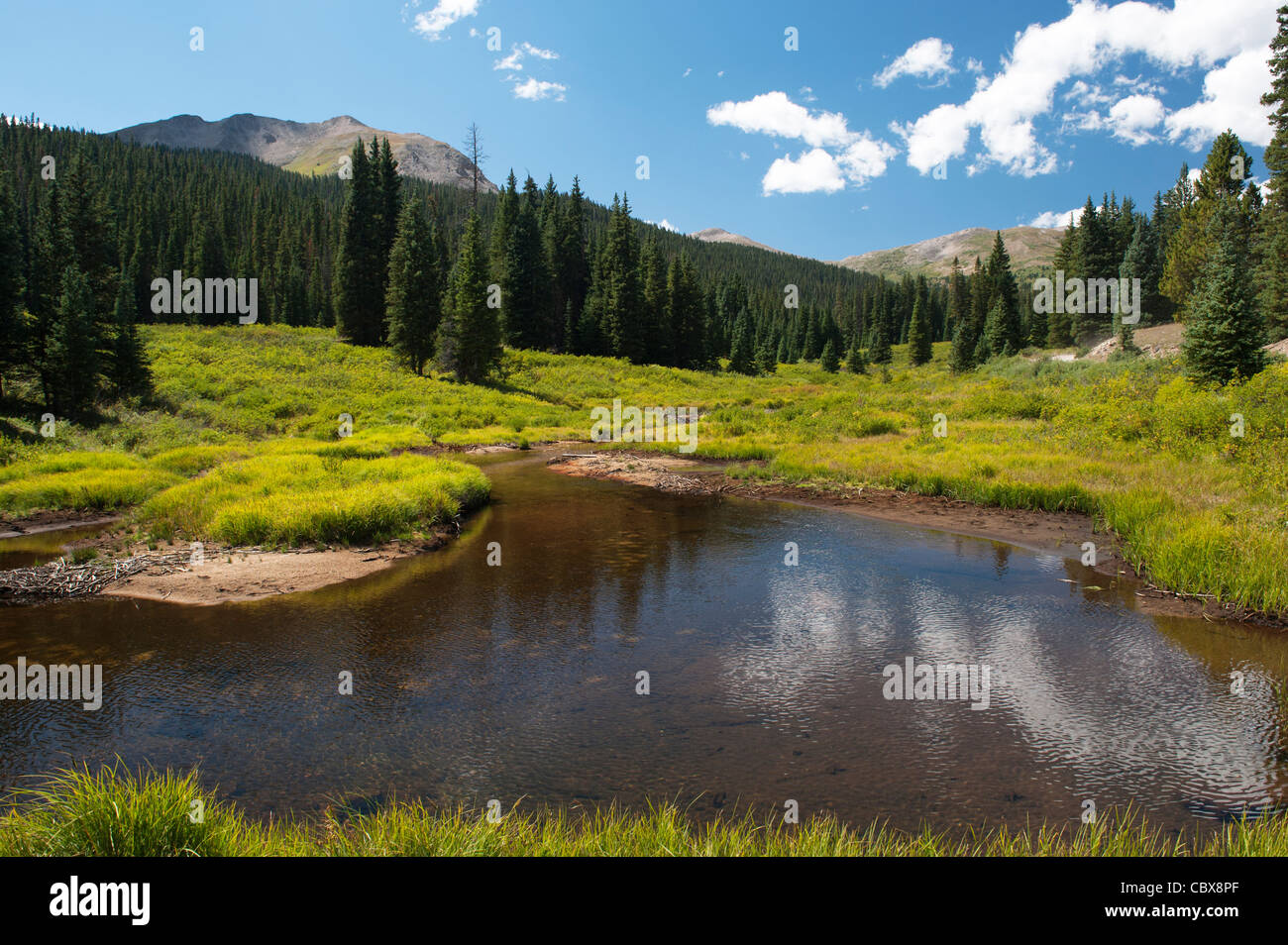 Chalk Creek along the four-wheel-drive Tincup Pass road, Chaffee County, Colorado - Stock Image