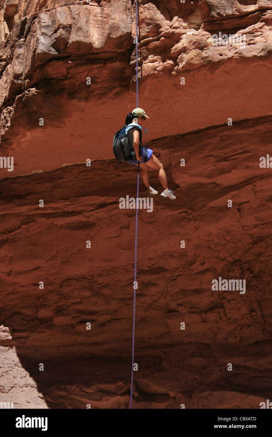 canyoneering asian woman rappels into a shadowed canyon in the Grand Canyon National Park - Stock Image