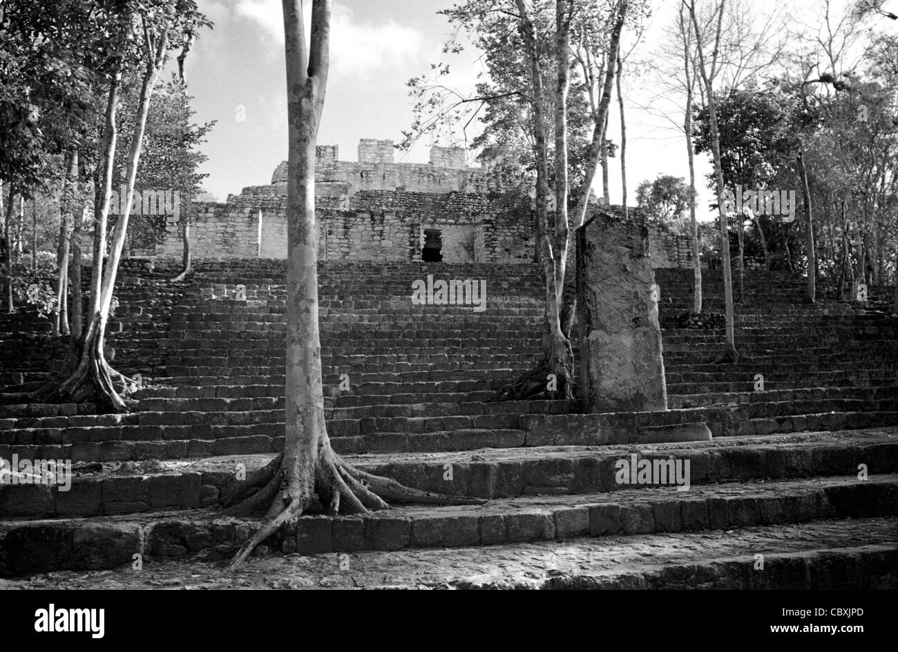 Structure VIII at the Mayan ruins of Calakmul, Campeche, Mexico. - Stock Image