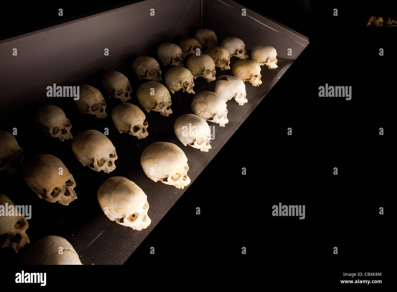 Skulls of victims of Rwanda's 1994 genocide lie in the Kigali Genocide Memorial Center. - Stock Image