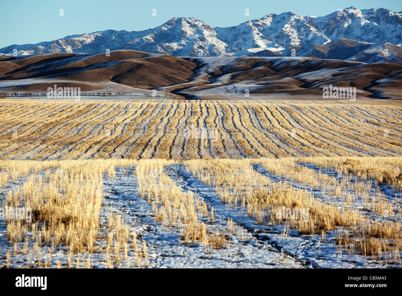 First snow on the fields and mountains Stock Photo