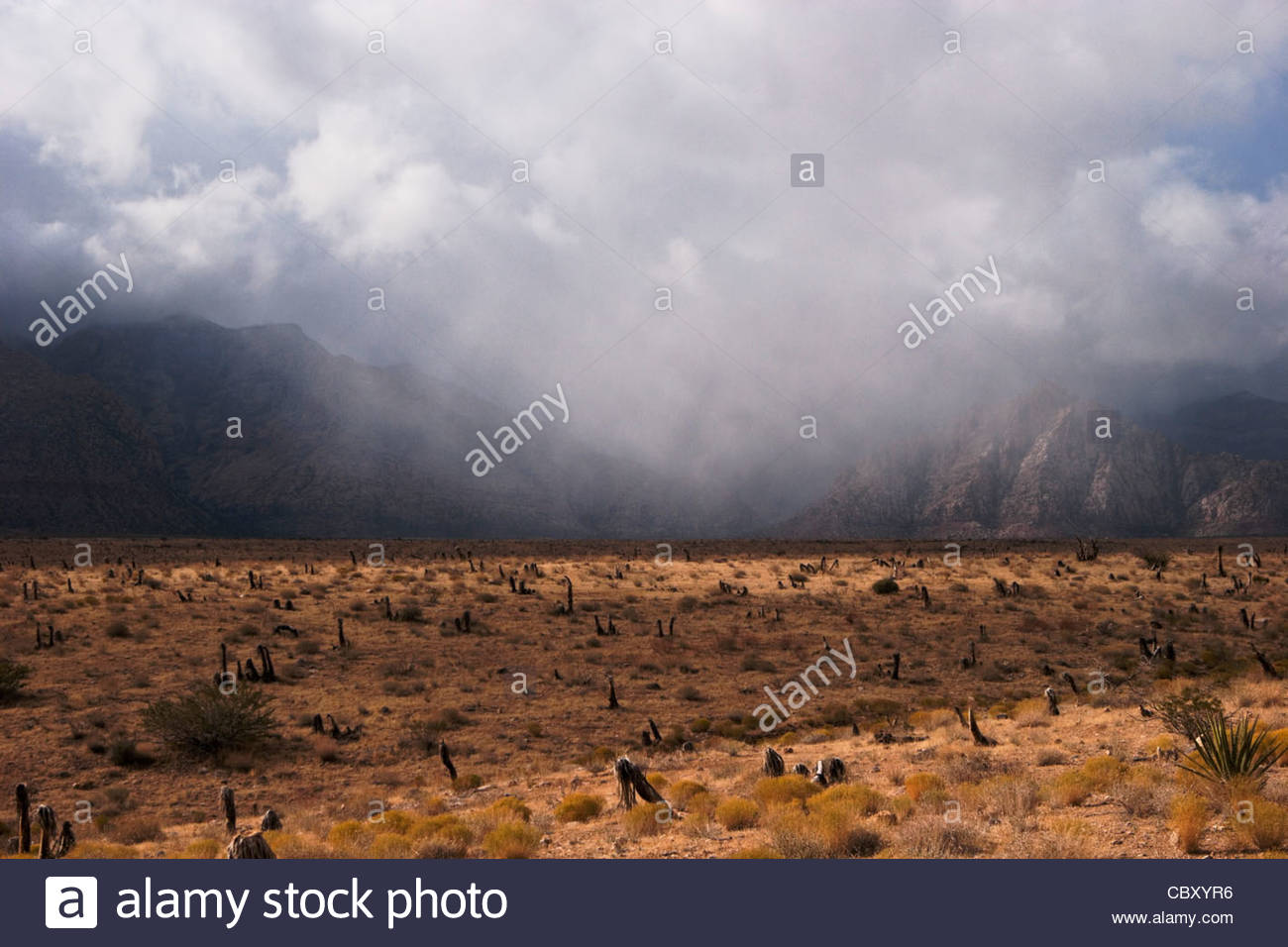 Rain Over Mountains, Red Rock Canyon, Nevada - Stock Image