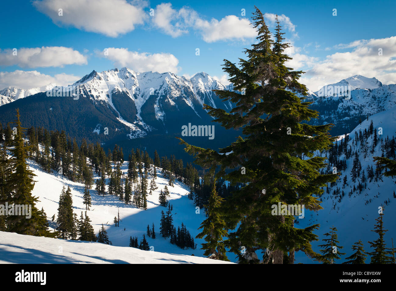 The Border Peaks between USA and Canada in North Cascades national park in the midst of a very cold winter. - Stock Image