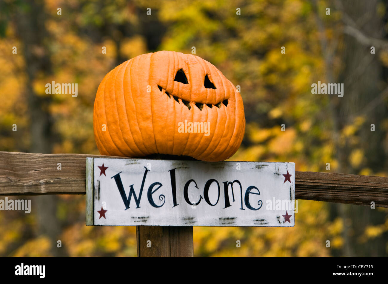 Autumn Color And Welcome Sign With Funny Jack-O-Lantern On