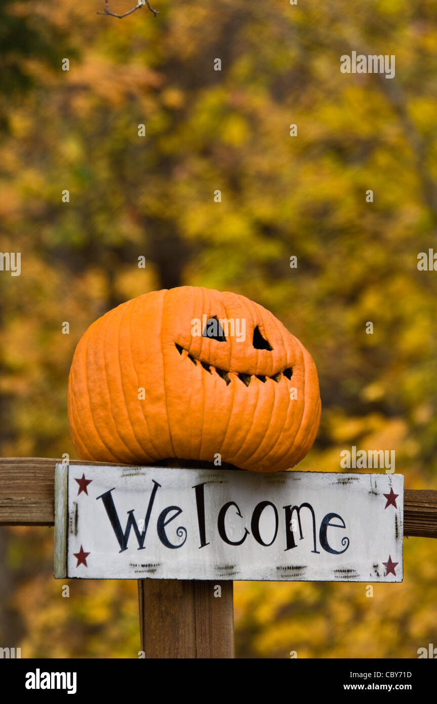 Autumn Color And Welcome Sign With Funny Jack O Lantern On Fence Post Stock Photo Alamy
