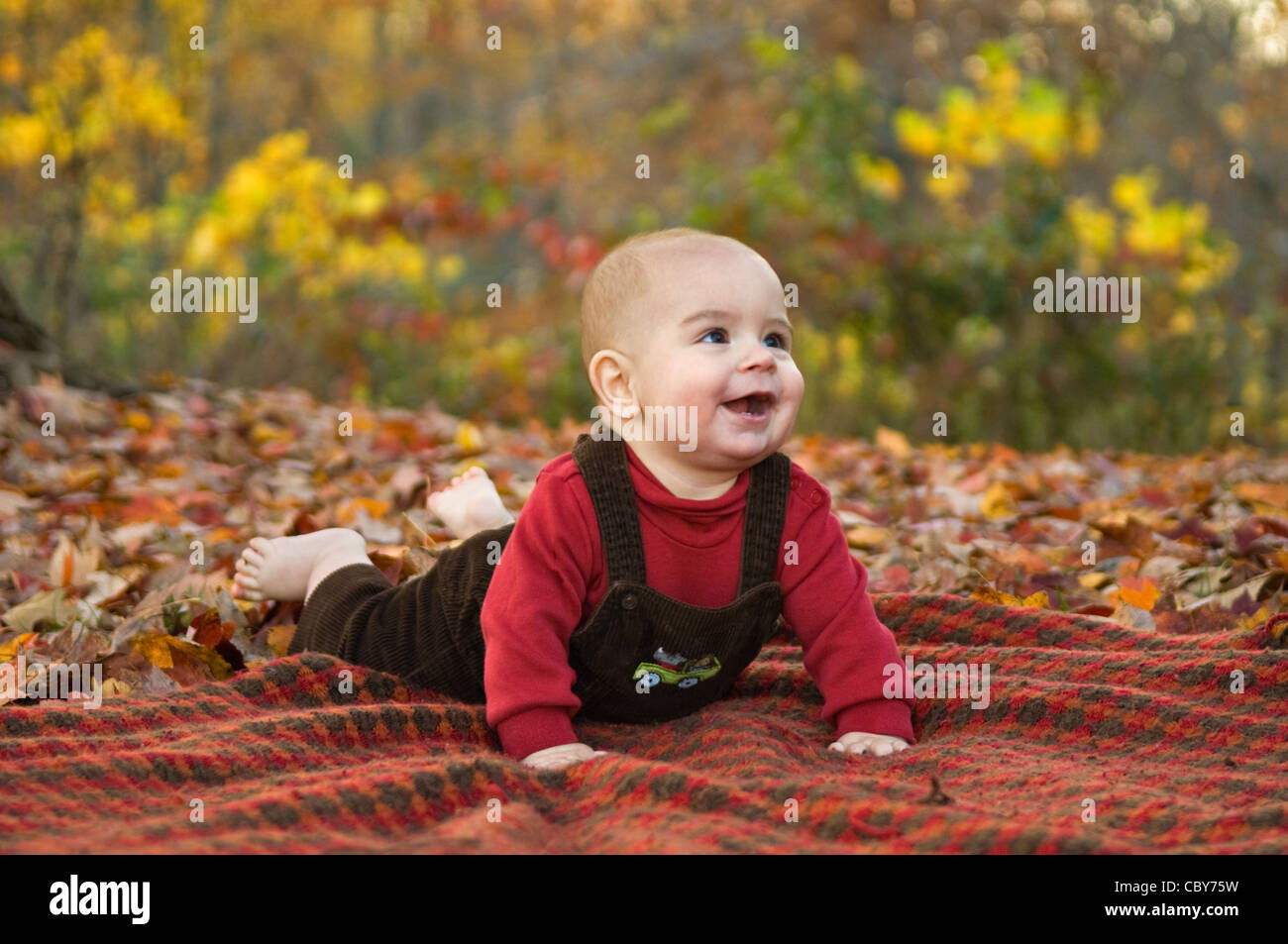 SIx Month Old Baby Boy Laying on Blanket Outside amid Autumn Color - Stock Image
