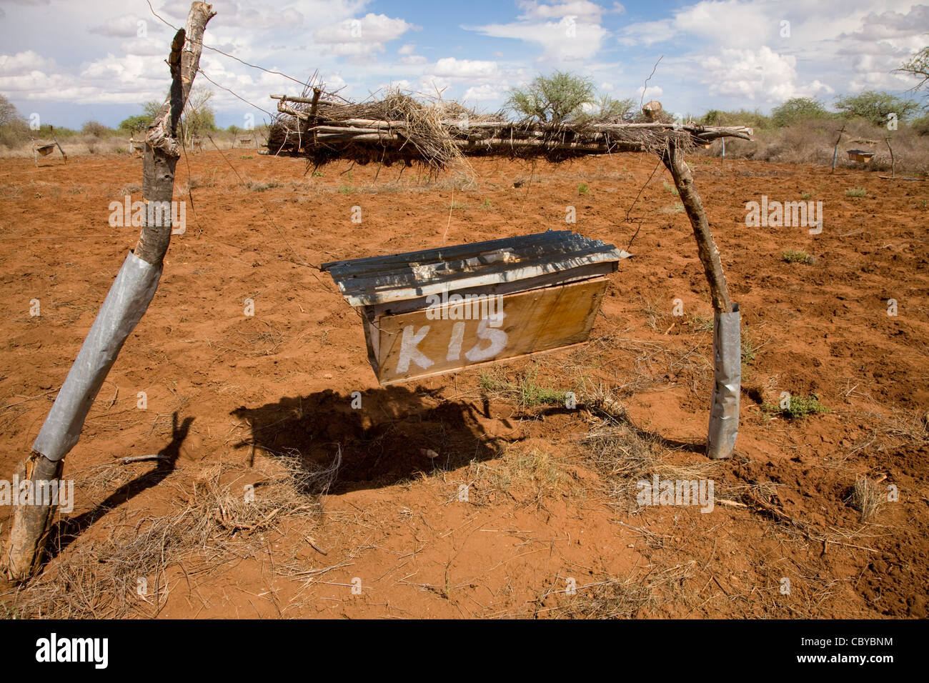 Elephant deterring beehive fence in Sagalla near Voi in southern Kenya - Stock Image