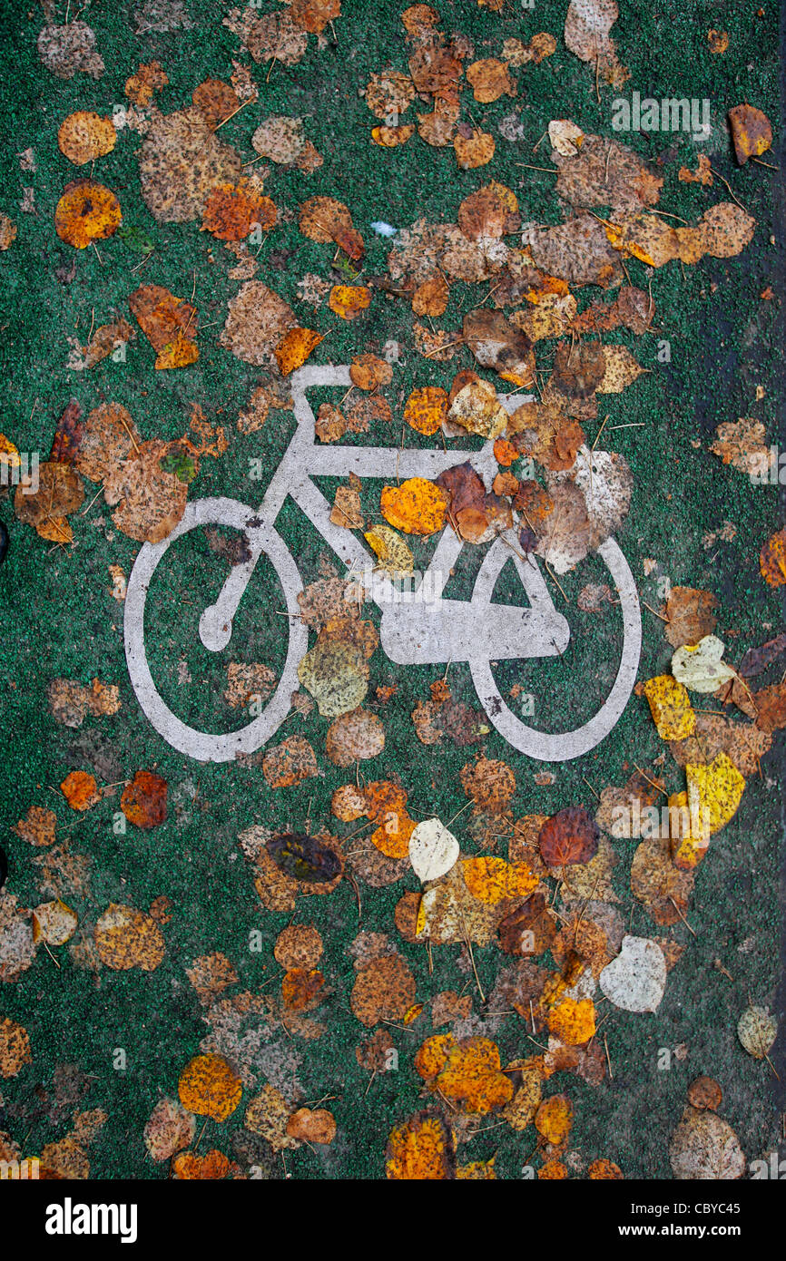Autumn leaves on a bicycle lane - Stock Image