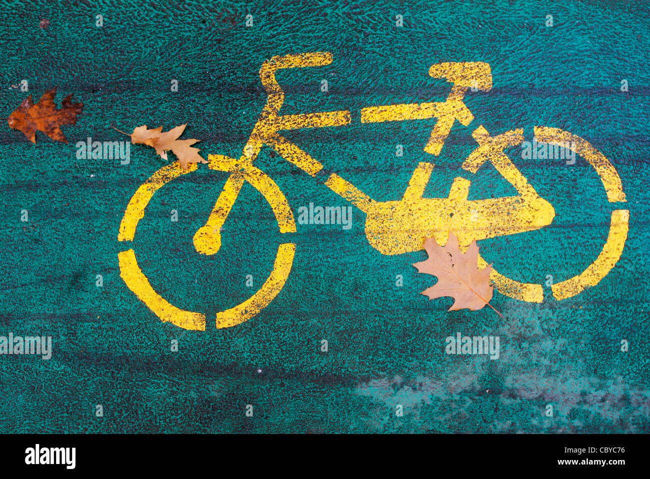 Detail of a bicycle lane in a park with autumn leaves - Stock Image