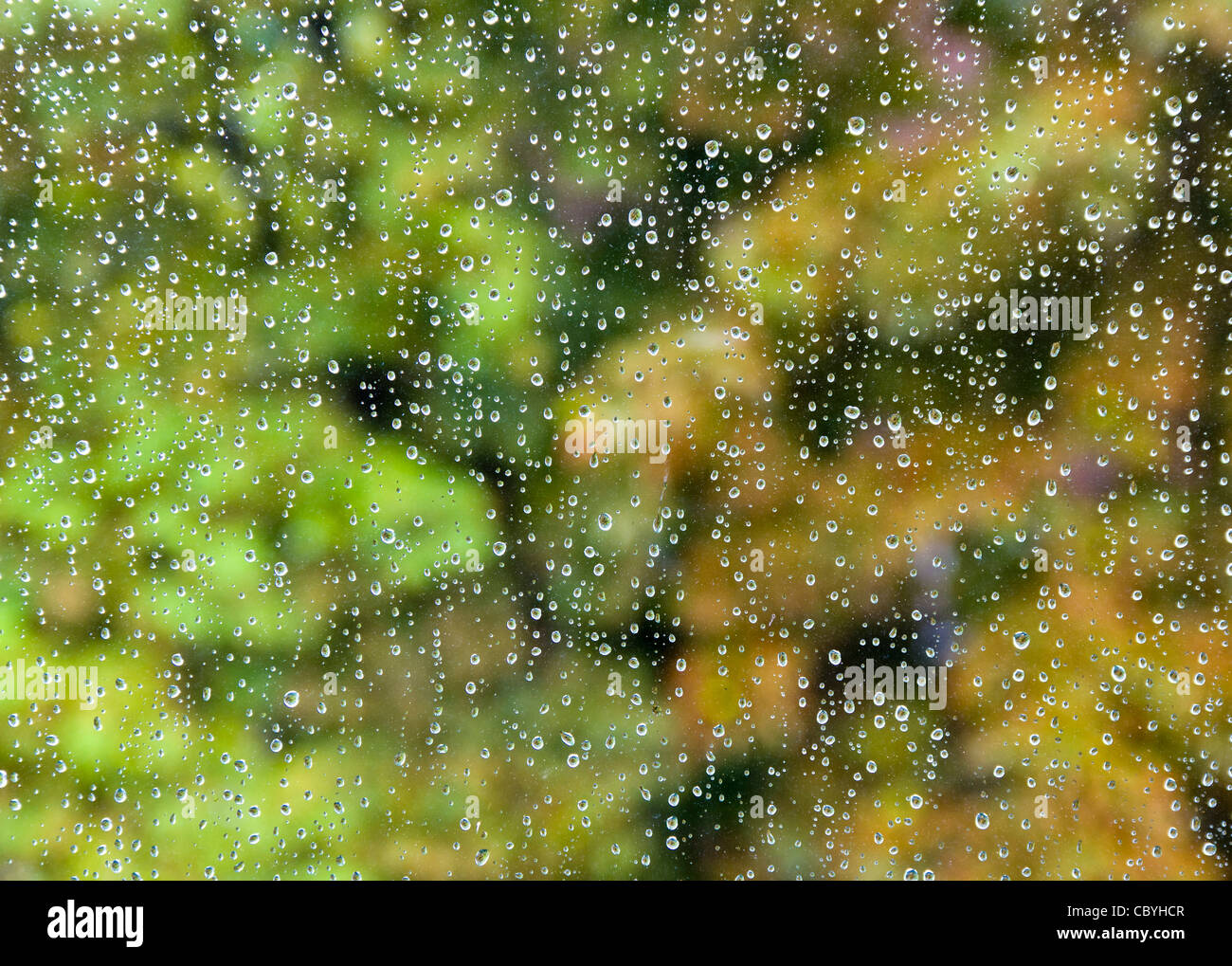 rain drops on window in autumn - Stock Image