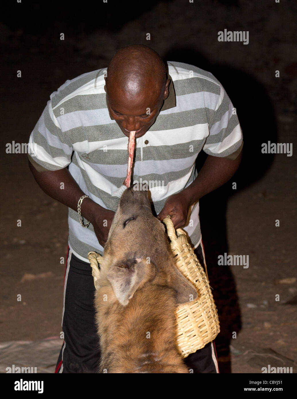 The Hyena man feeding wild hyenas outside Harar in eastern Ethiopia. - Stock Image