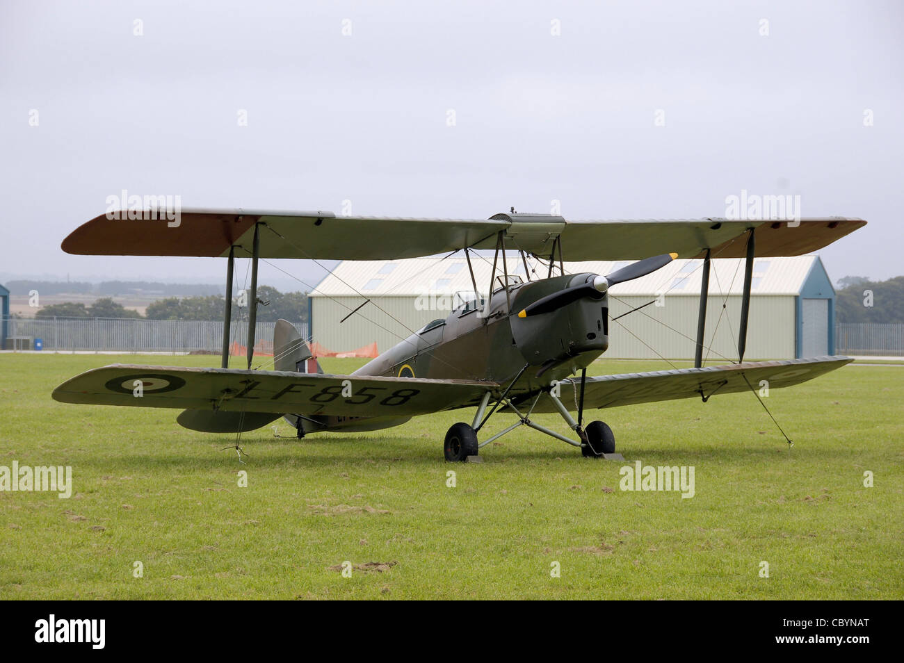 de Havilland DH-82B Queen Bee (LF858, G-BLUZ) at the 2008 Open Day, Kemble Airport, Gloucestershire, England. - Stock Image