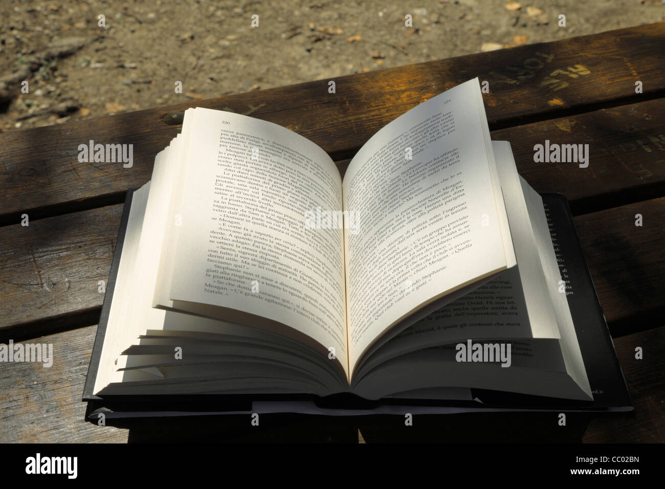 Book sunlit - Stock Image