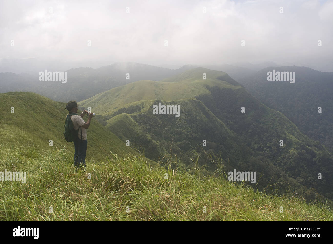 Grassland biomes in the periyar tiger reserve Stock Photo