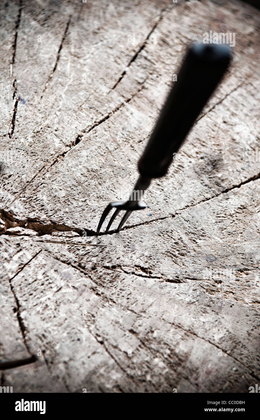 Old fork digging into wooden tree log - Stock Image