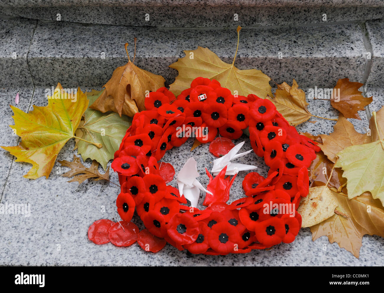 A remembrance day wreath of poppies. - Stock Image
