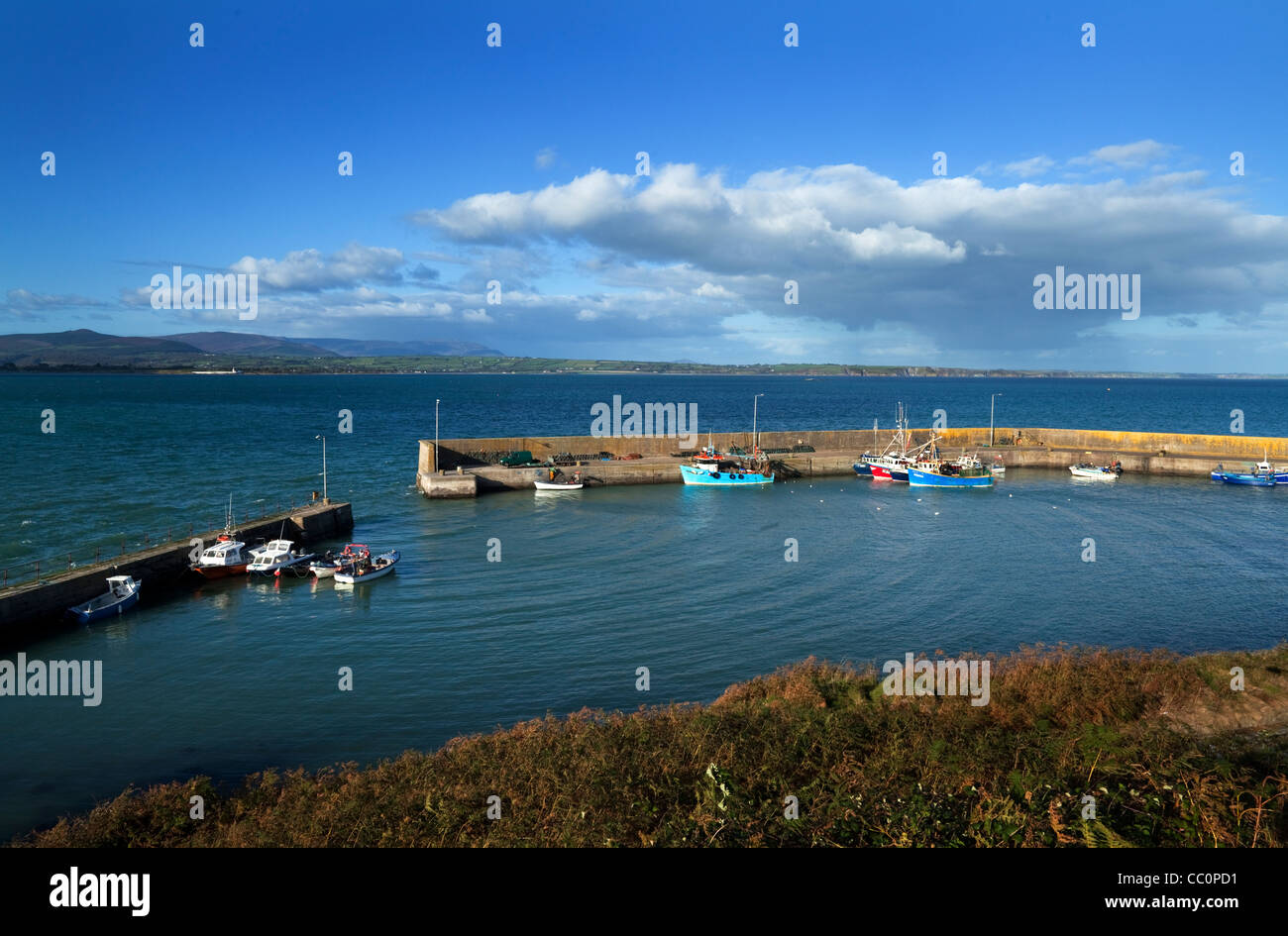 Helvick Harbour, On the An Rinn (Ring) Peninsula, County Waterford, Ireland - Stock Image