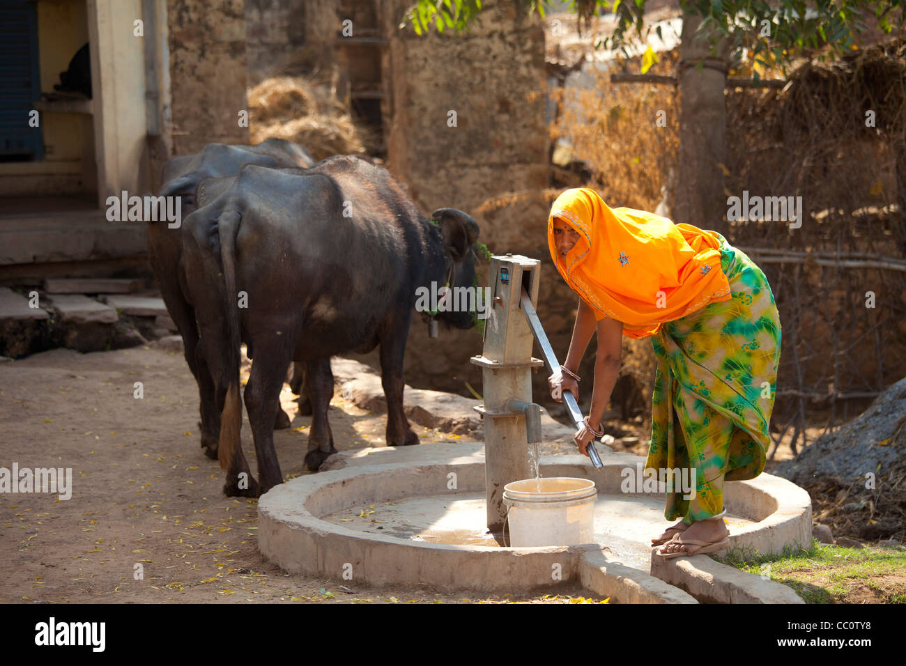 Indian woman villager pumping water from a well at Sawai Madhopur in Rajasthan, Northern India - Stock Image