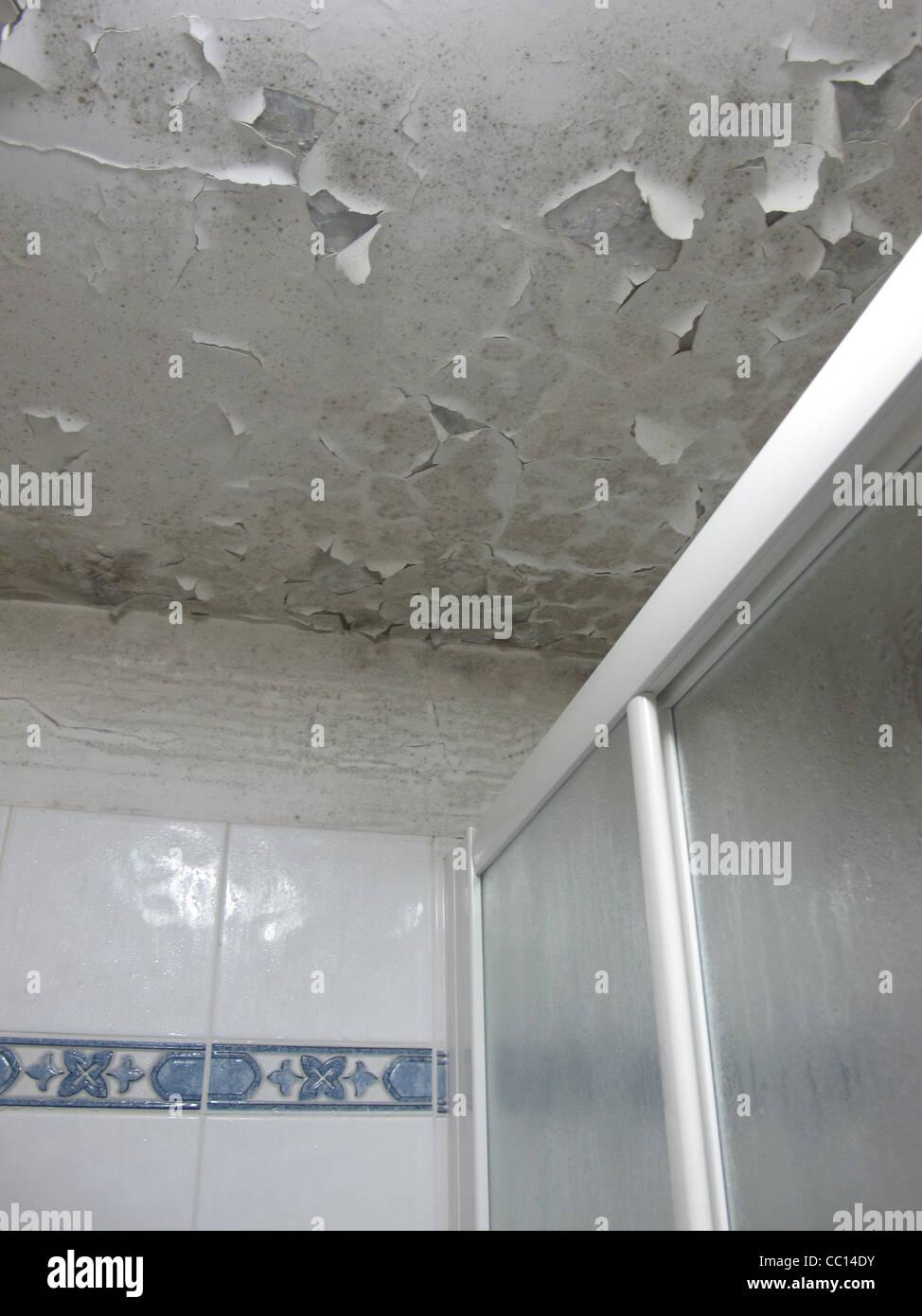 Condensation Bathroom Tiles Stock Photos Amp Condensation