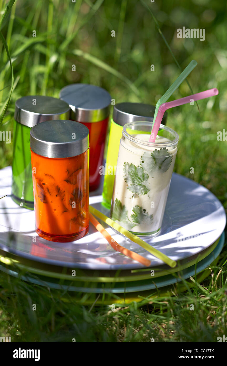 Fennel Iced Soup - Stock Image
