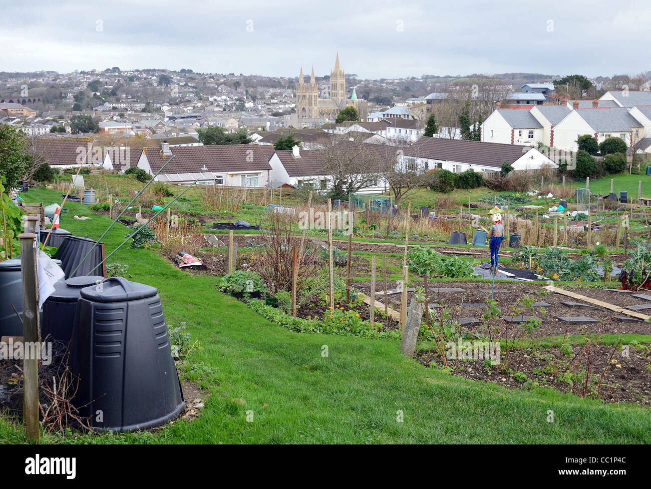 council owned allotments in Truro, Cornwall, UK - Stock Image
