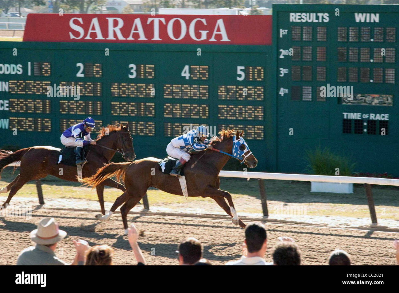 Secretariat Horse High Resolution Stock Photography And Images Alamy