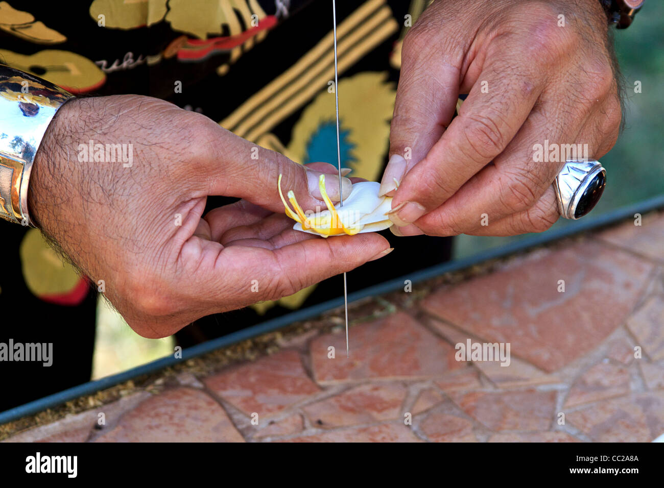 Closeup of local man stringing plumeria (frangipani) flowers to make a lei on Molokai, Hawaii, USA. Stock Photo