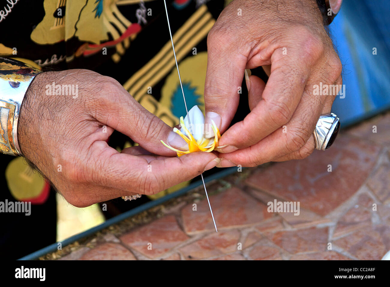 Closeup of local man stringing plumeria (frangipani) flowers to make a lei on Molokai, Hawaii, USA. - Stock Image