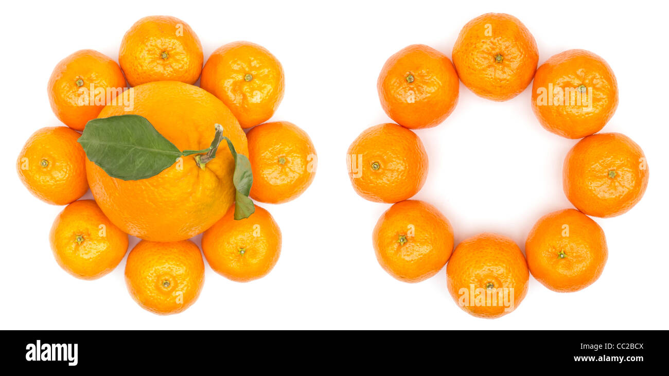 Oranges Flower - Stock Image
