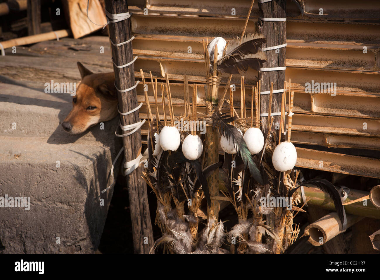 India, Arunachal Pradesh, Ziro, traditional apatani egg and feather tribal totem remembering dead relative - Stock Image
