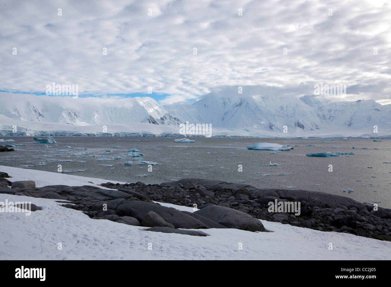 Ice bergs float into Dorian Bay, Antarctica - Stock Image