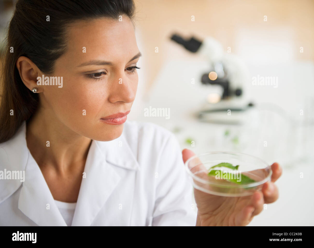 USA, New Jersey, Jersey City, Female scientist examining sample - Stock Image