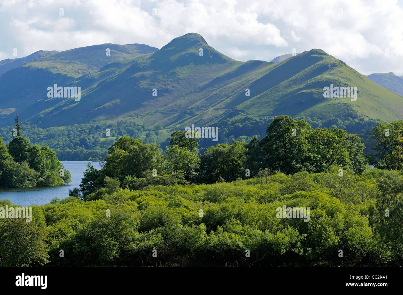 View across Derwent Water towards Catbells in Lake District National Park Cumbria England - Stock Image