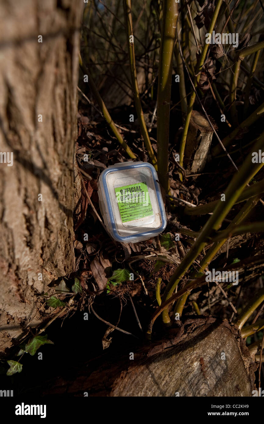 Small geocache box near trees in a woodland environment - Stock Image