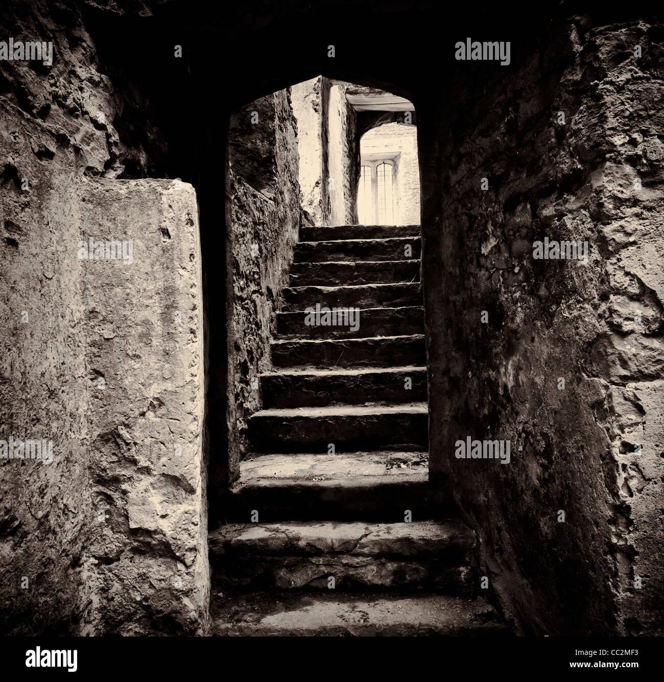 Doorway and steps in medieval castle ruins. Beupre Castle, Wales - Stock Image