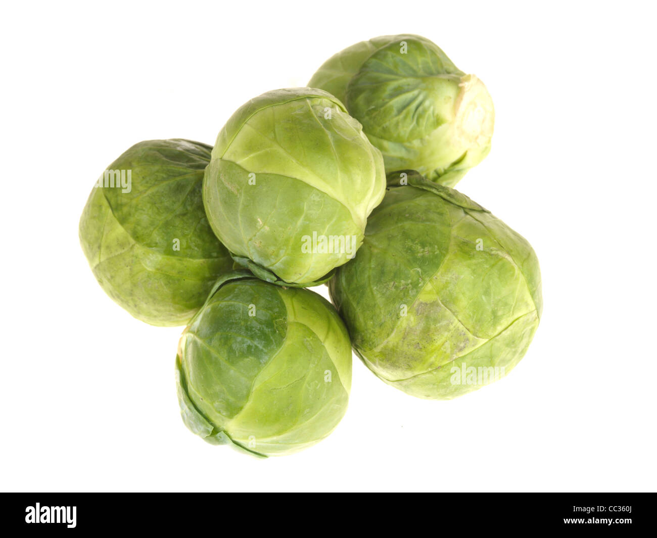 Fresh Healthy Raw Uncooked Brussel Sprouts Vegetables Against A White Background With No People And Copy Space Stock Photo