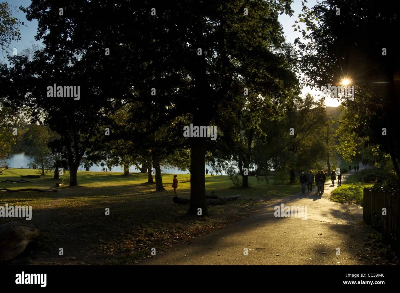 Hampstead Heath in the late summer sun - Stock Image