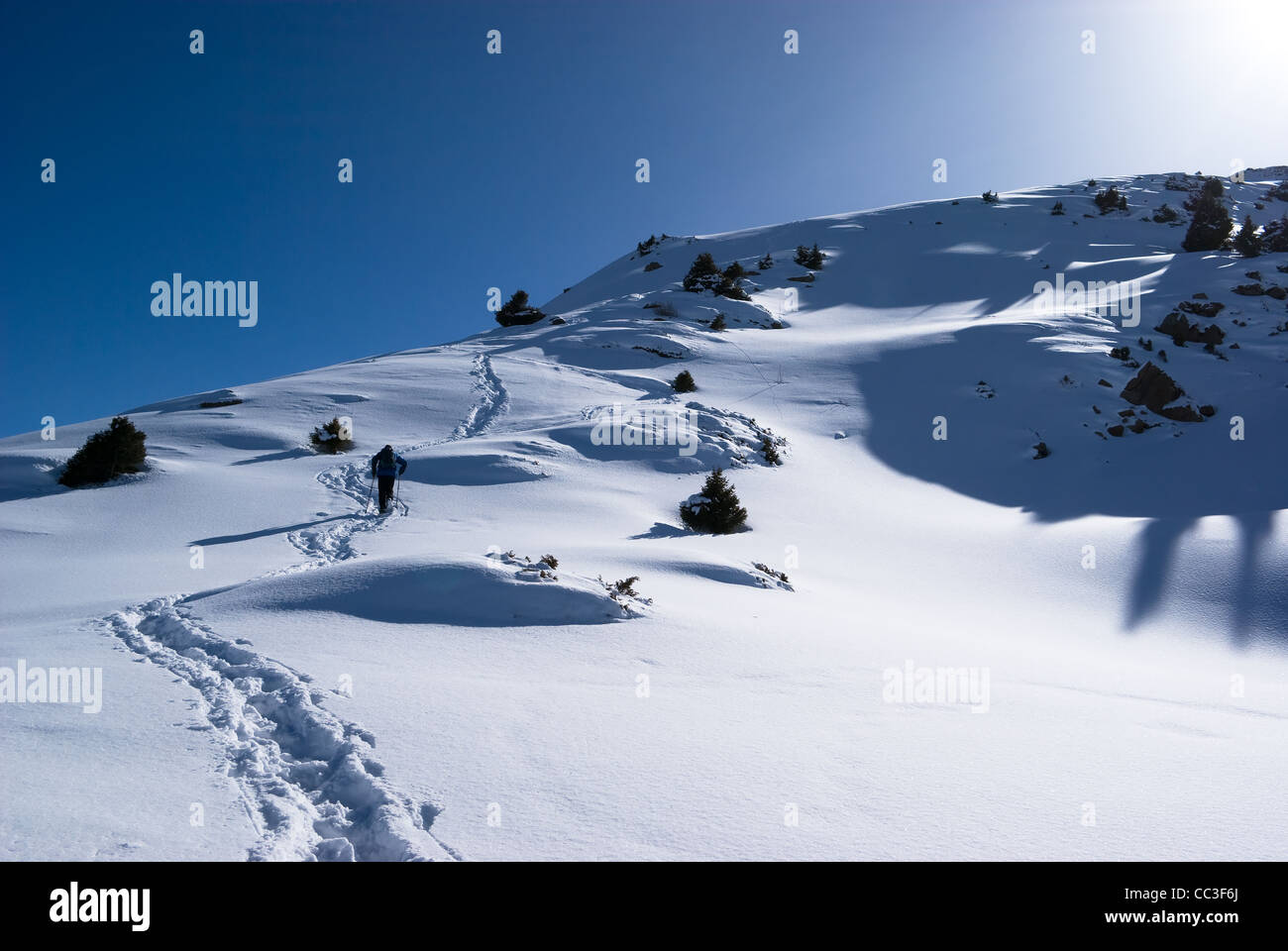 Backpacker in winter mountains - Stock Image