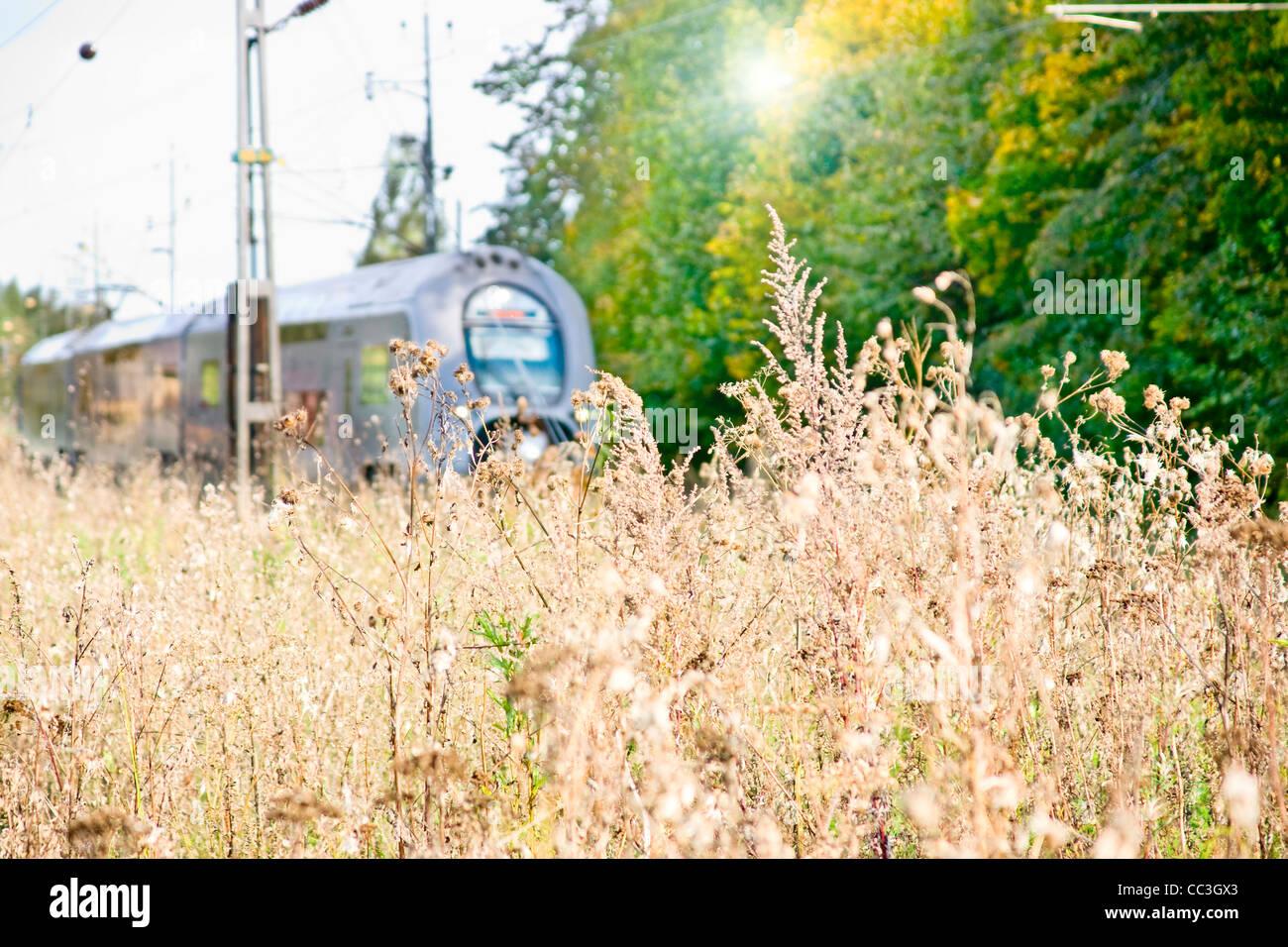 Train (motion blur) - Stock Image