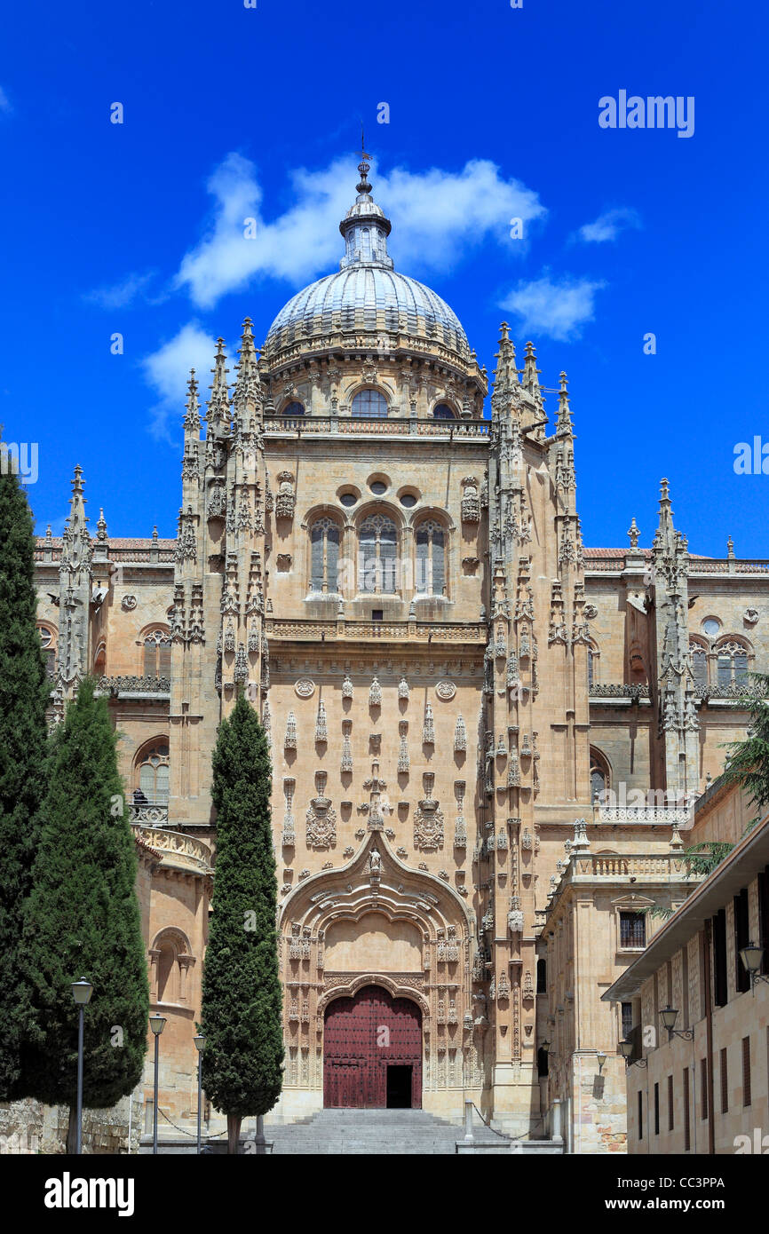New Cathedral (Catedral Nueva), Salamanca, Castile and Leon, Spain - Stock Image