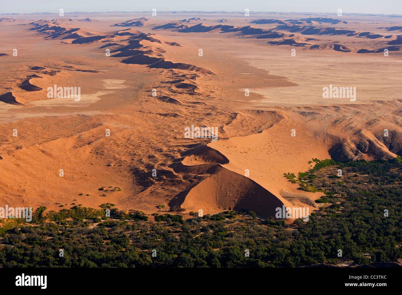Desert meets green fertile land, Namib Desert, Namibia aerial view Stock Photo
