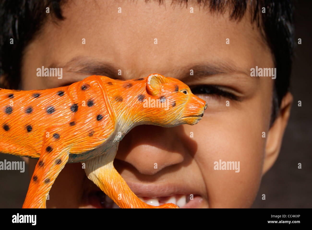 Small boy playing with tiger toy - Stock Image